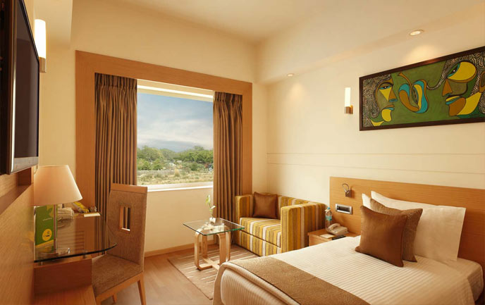 Hotels Near International Airport Delhi